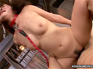 asian ultra-cutie receives a harsh cooch and backside plowing