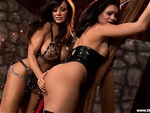 Alluring Lisa Ann torments a mischievous Charley chase